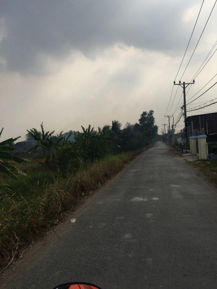 Bán lô đất xã Tân Qúy Tây, Bình Chánh. 2000m2