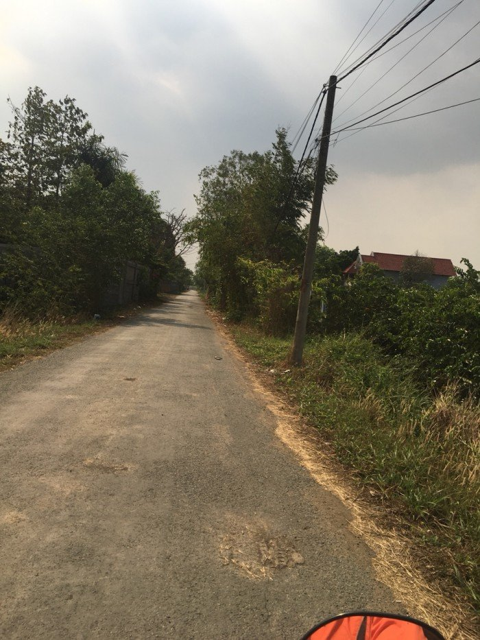 Đất mặt tiền đường Quy Đức, huyện Bình Chánh 1000m2