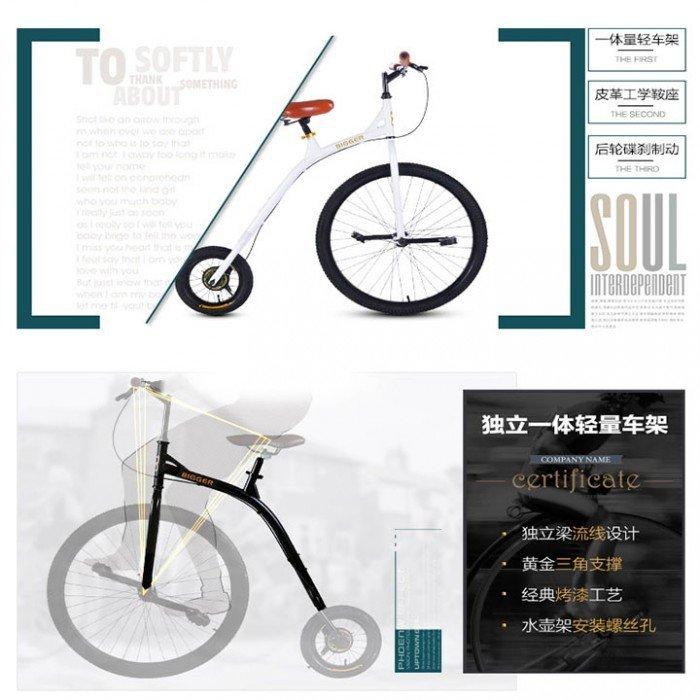 Xe đạp cổ siêu sang chảnh