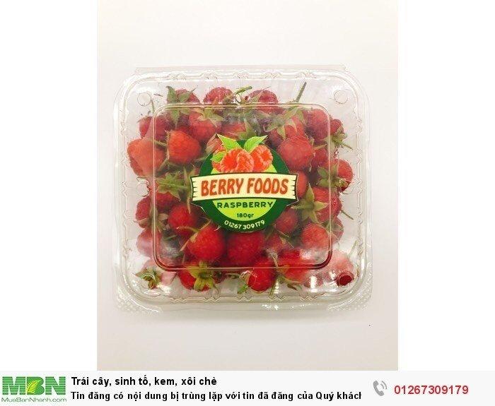Raspberry - Phúc Bồn Tử - Mâm Xôi TP Hồ Chí Minh0