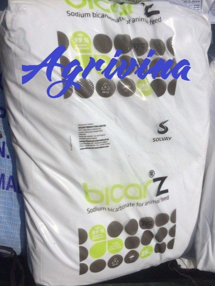 Sodium Bicarbonate (Soda Lạnh)0