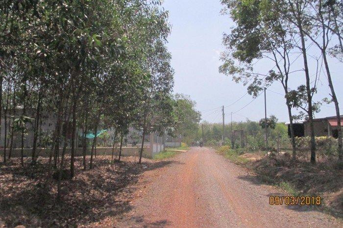 Đất nền giá rẻ xã An Viễn,Trảng Bom,100-160m2