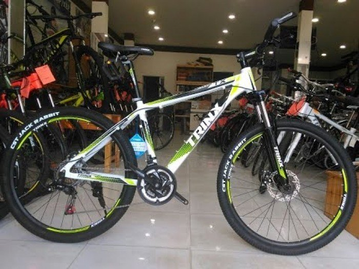 Xe đạp TRINX TX18 2017 3