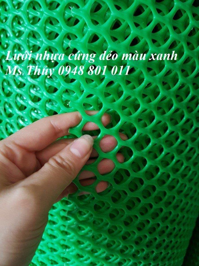Lưới nhựa cứng mắt cáo màu xanh mắt lưới 1cm 2cm 3cm