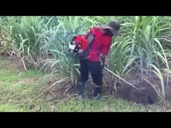 Máy xạc cỏ, xới đất đa năng đeo vai3