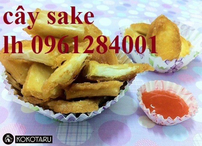 món ăn được chế biến từ quả sa kê2