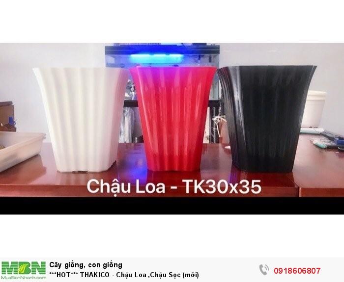 THAKICO - Chậu Loa, Chậu Sọc (mới)2