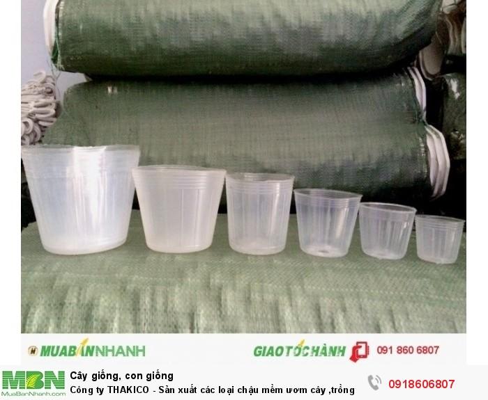 Công ty THAKICO - Sản xuất các loại chậu mềm ươm cây ,trồng lan hồ điệp và vật tư nông nghiệp