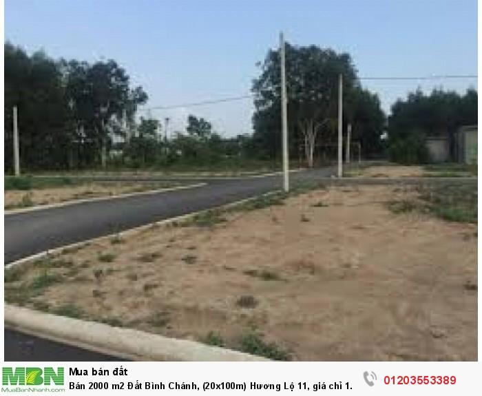Bán 2000 m2 Đất Bình Chánh, (20x100m) Hương Lộ 11, giá chỉ 1.9 tr/m2