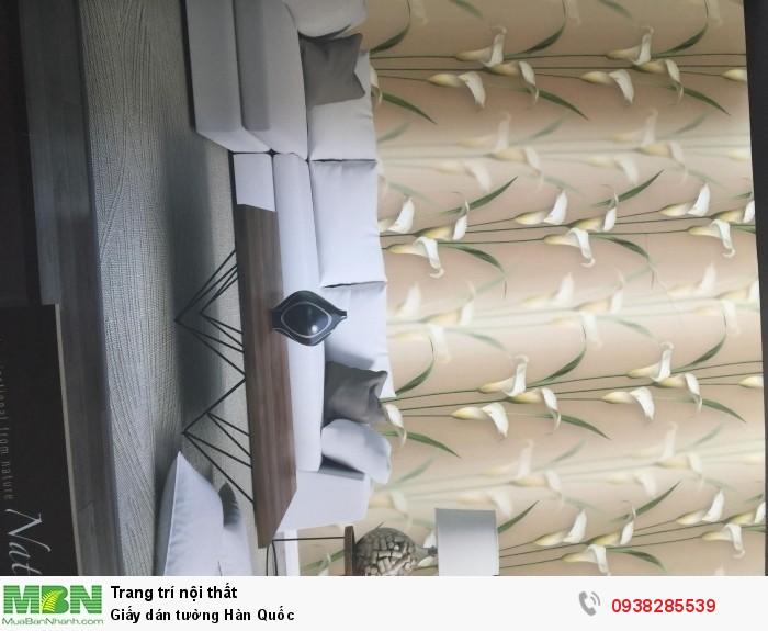Giấy dán tường Hàn Quốc3