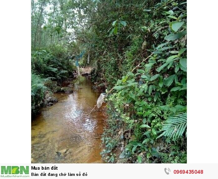 Đất thuộc phường Phú Bài TX Hương Thủy TP Huế