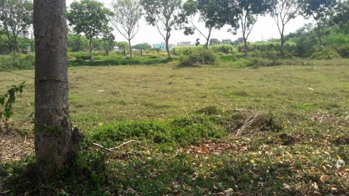 Đất Nền Bình Lợi, Bình Chánh, HCM, SHR