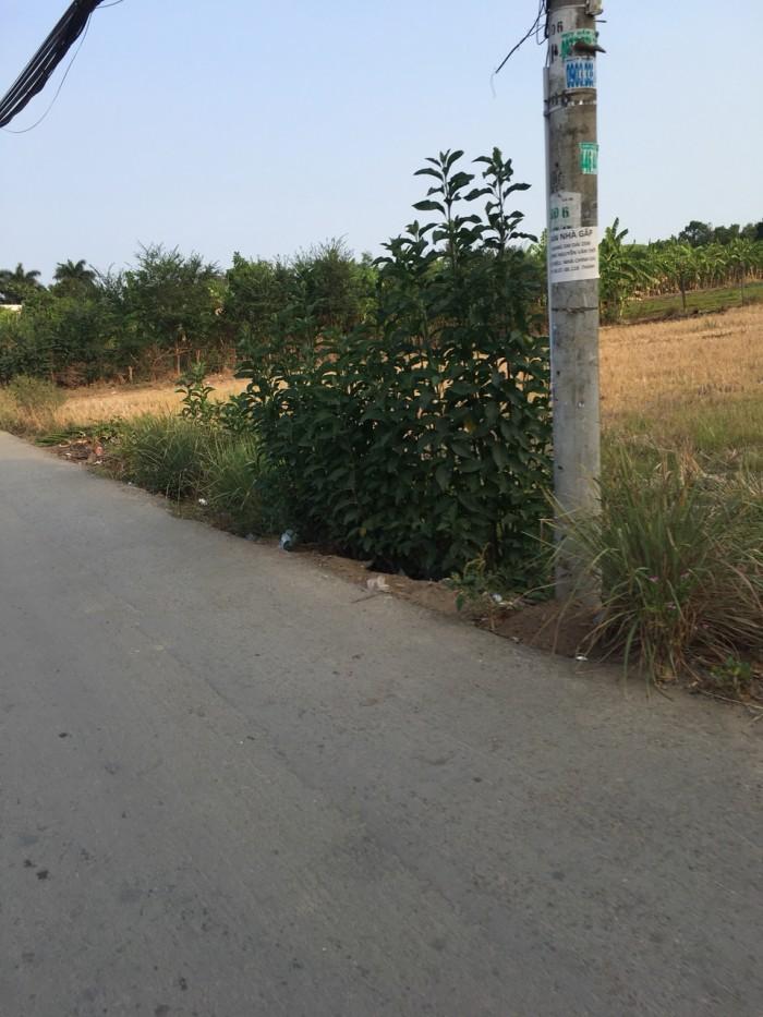Đất thổ cư mặt tiền đường T12, xã Tân Qúy Tây, Bình Chánh