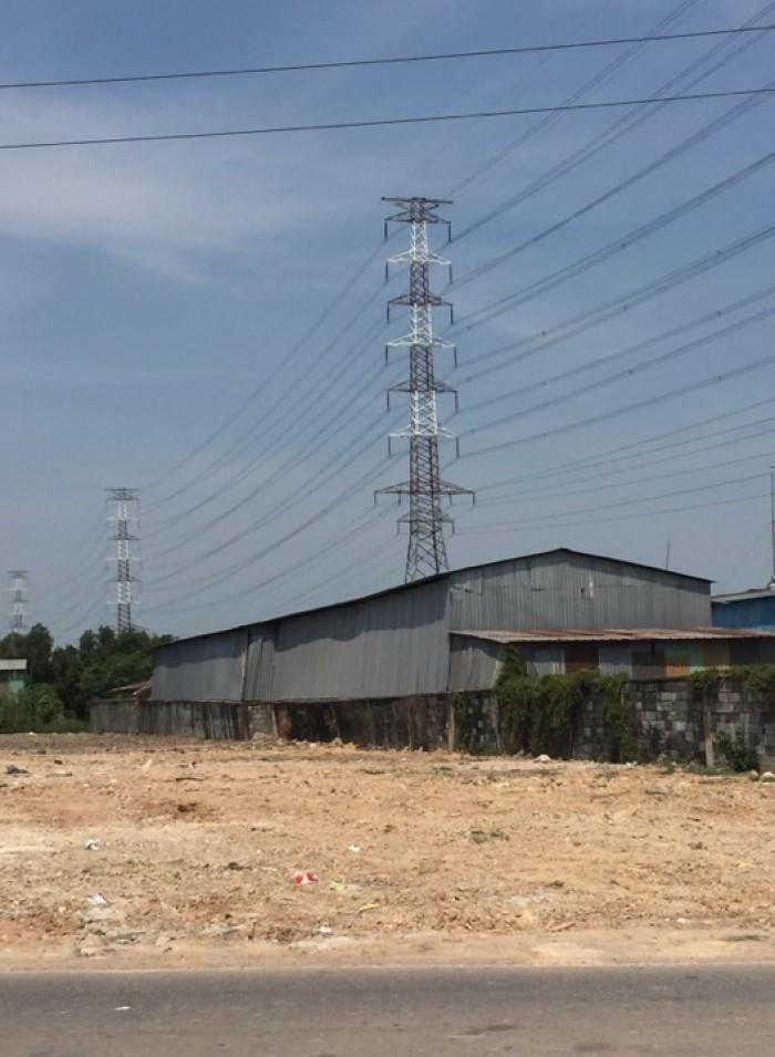 Bán Đất Mặt Tiền võ văn Bích Tân Thạnh Đông Củ Chi ,dt,8200m2, SHR