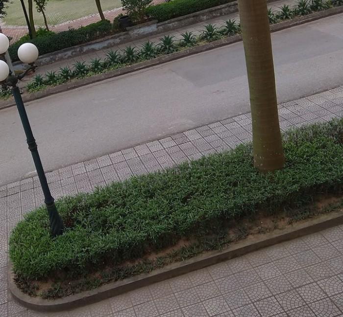 Do cần tiền đầu tư kinh doanh gia đình tôi Cần bán gấp khu đất ở Tái Định Cư- Trâu Quỳ - Gia Lâm- Hà Nội