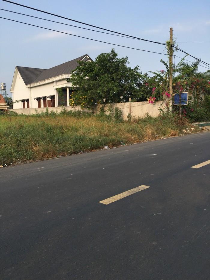 1660m2 đất, giá 1,5 tỷ xã Quy Đức, huyện Bình Chánh