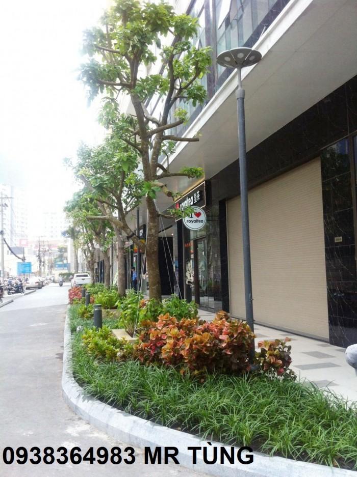 Cho thuê shophouse The Botanica,104 Phổ Quang,P2,Q.TB,diện tích 70m2,giá 35tr/th