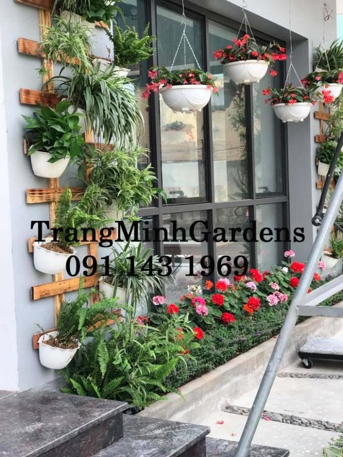 Dịch vụ tư vấn, cung cấp, chăm sóc hoa cây cảnh tại nhà (hoa hồng, hoa thảm, cây xanh...)1