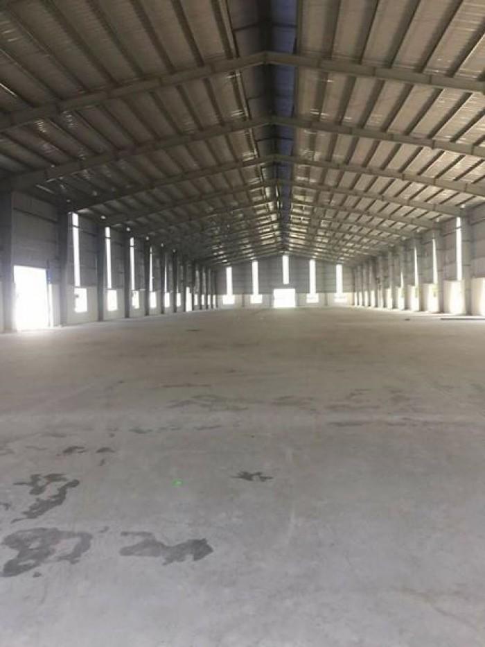 Cho thuê xưởng 710m2 đến 3000m2 tại Hoằng Hóa Thanh Hóa gần QL1