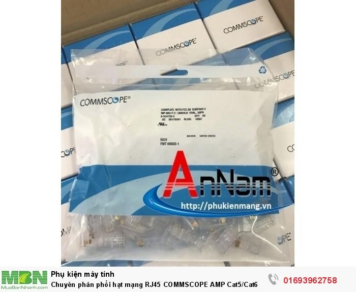 Chuyên phân phối hạt mạng RJ45 COMMSCOPE AMP Cat5/Cat6 chân đồng 100% có sẵn hàng5