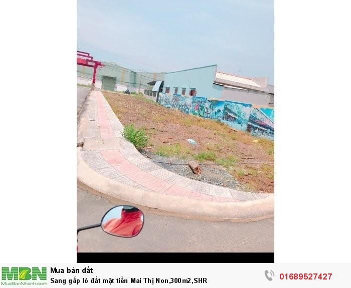 Sang gấp lô đất mặt tiền Mai Thị Non,300m2,SHR