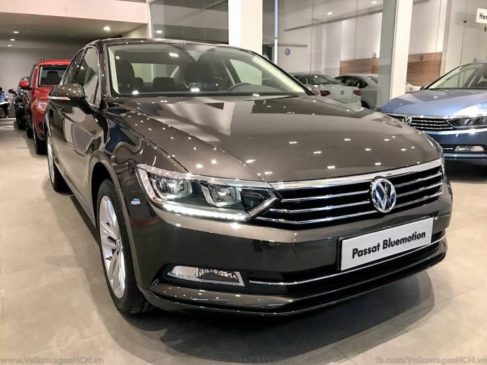 BÁN XE VOLKSWAGEN PASSAT Bluemotion GIAO NGAY 7