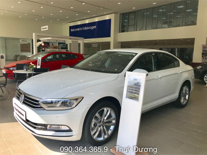 BÁN XE VOLKSWAGEN PASSAT Bluemotion GIAO NGAY 1