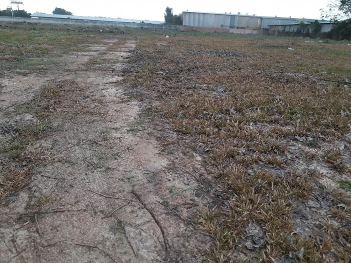 Bán gấp đất nền giá rẻ ở Vĩnh Tân.
