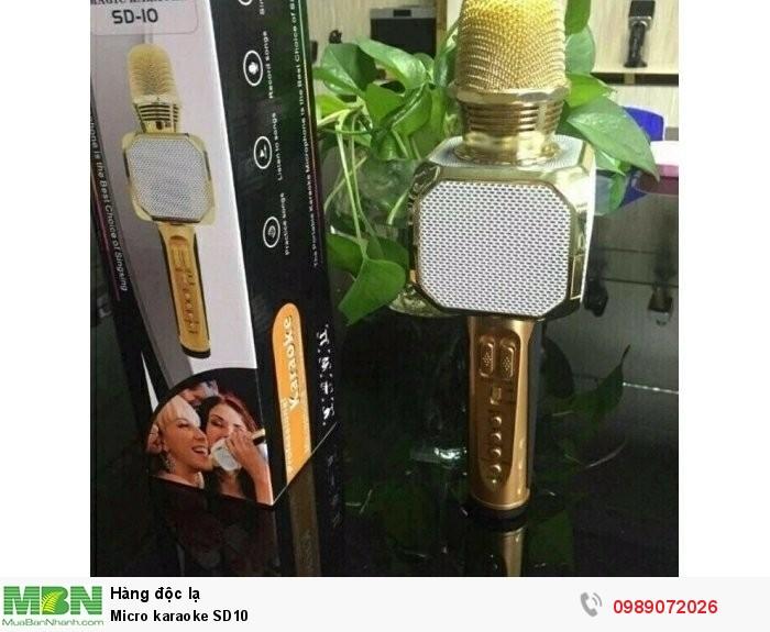 Micro karaoke SD103