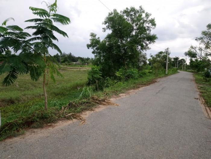 2000m2 2tr/m2 đường T12, xã Tân Quý Tây, Bình Chánh.