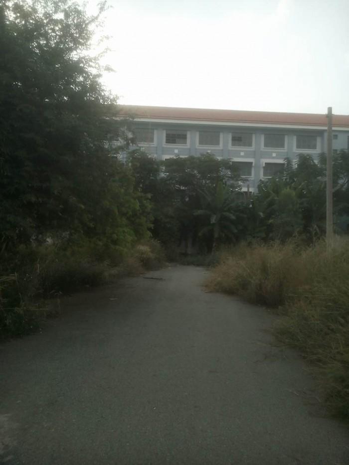 Đất nền thị trấn Tân Túc Bình Chánh mặt tiền Bùi Thanh Khiết đối diện trường cấp 3 Tân Túc