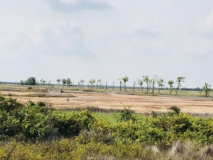 Bán đất tại Long An, đất thổ cư, sổ hồng riêng, cách TPHCM 20 phút