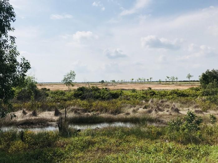Cần bán đất dự án mặt tiền đường QL50, đất có sổ hồng riêng