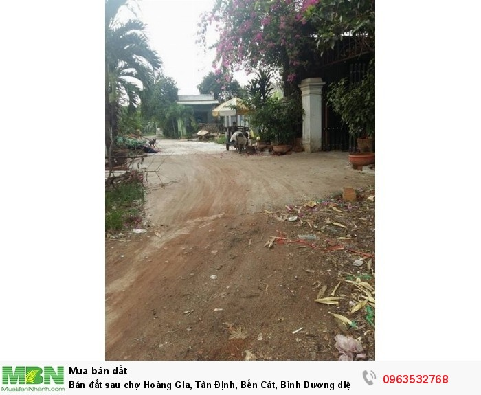 Bán đất sau chợ Hoàng Gia, Tân Định, Bến Cát,  Bình Dương diện tích 100m2  giá 8.5 Triệu/m²