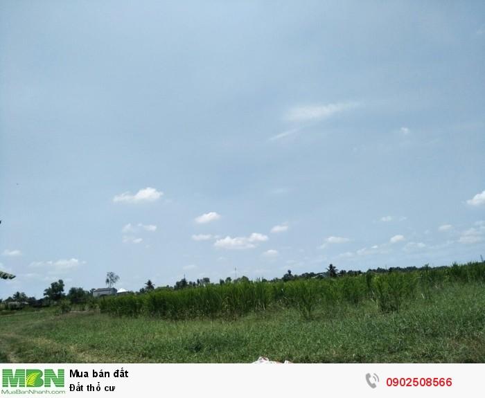 Đất thổ cư hẻm xe tải Tiện xây nhà ở, xây cho thuê công ty, nhà xưởng Huyện Thủ Thừa,Long An