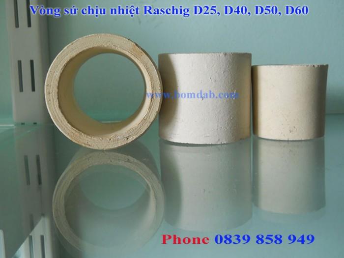 Đệm sứ Ceramic, Vật liệu đệm chịu nhiệt, Raschig1