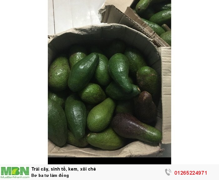 Bơ ba tư Lâm Đồng1