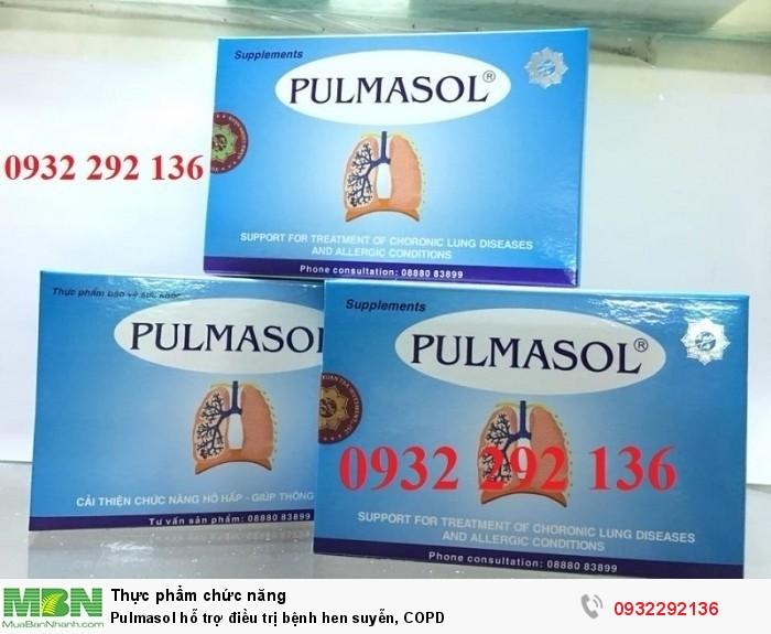 Pulmasol hỗ trợ điều trị bệnh hen suyễn, COPD