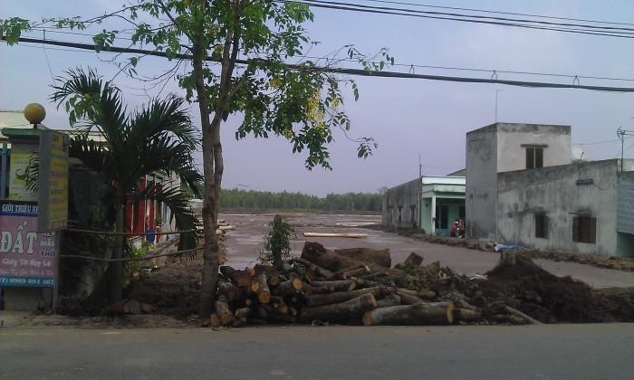 100% Đất Tp.Hồ Chí Minh - Nhận Giữ Chỗ Dự Án Kdc Quận Bình Chánh