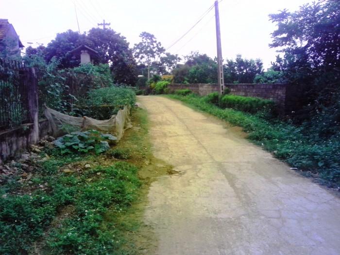 Bán nhà đất ở xã Đồng Tâm, Yên Thế, Bắc Giang 1701 m2