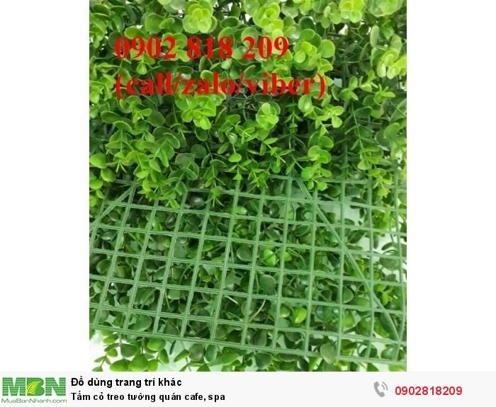 Tấm cỏ treo tường quán cafe, spa2