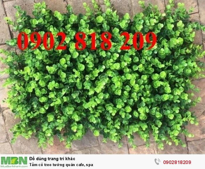 Tấm cỏ treo tường quán cafe, spa3