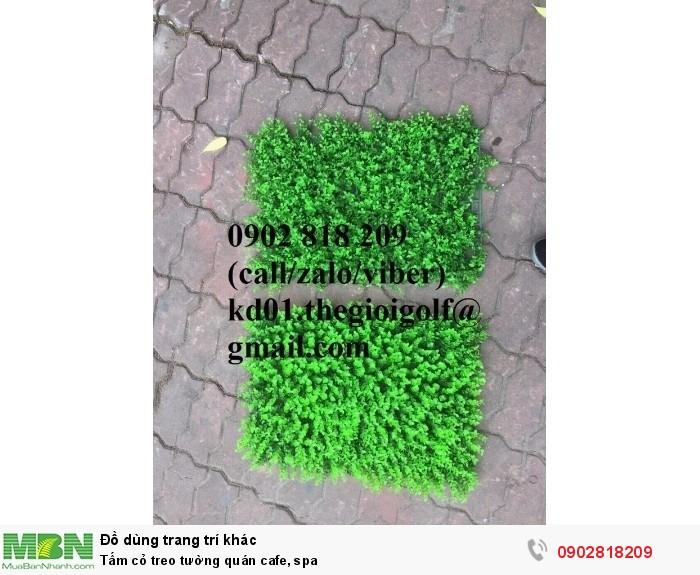 Tấm cỏ treo tường quán cafe, spa5