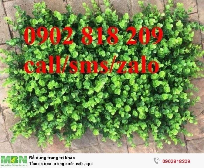 Tấm cỏ treo tường quán cafe, spa7