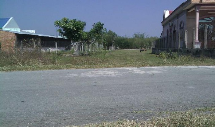 Cần tiền cho đi du học, bán 1645m2 đất Mặt Tiền Nguyễn Thị Lắng, 1350m2 thổ cư