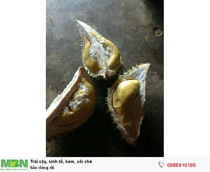 Sầu riêng ri64