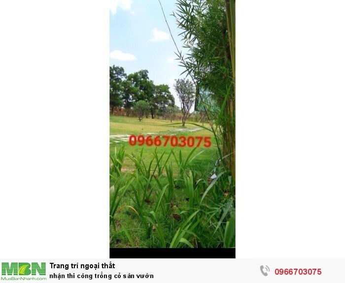 Nhận thi công trồng cỏ sân vườn3