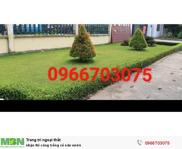 Nhận thi công trồng cỏ sân vườn4
