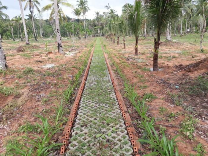Đất Vàng Đặc Khu Phú Quốc Đầu Tư Hôm Nay Lợi Nhuận 15% Ngày Mai