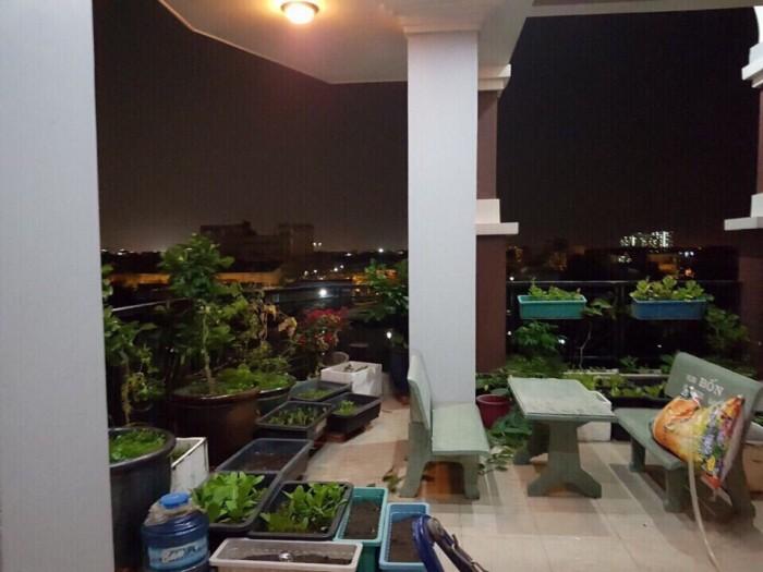 Chính chủ cần bán gấp nhà mới xây 3 tầng, 104m2 MT Lưu Hữu Phước, trung tâm Q.8, dọn vào ở ngay